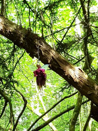 Clearwell, UK: hanging faries