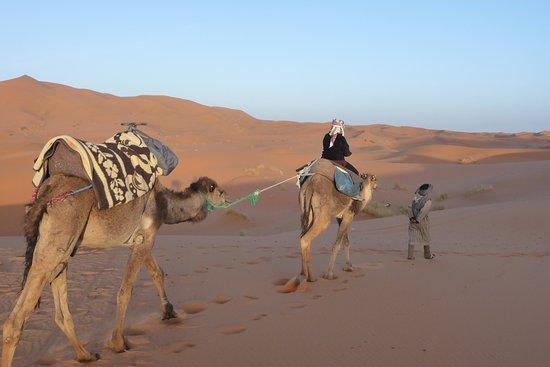 Wild Desert of Morocco