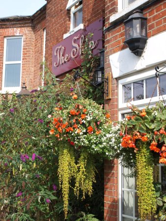 Reedham, UK: Full of blooms this year