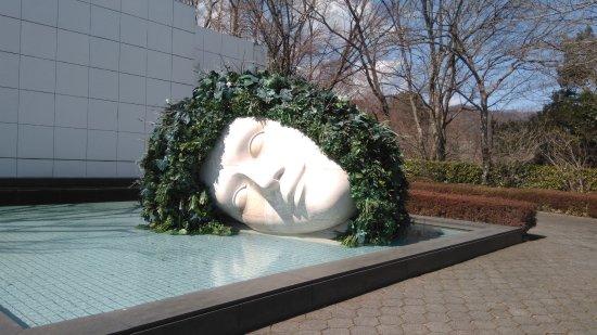 箱根雕刻森美術館: 雕塑3