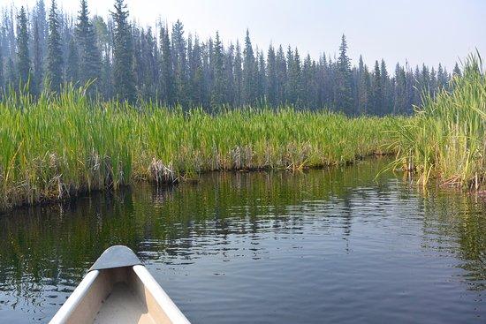 Lac le Jeune Resort: Lac Le Jeune