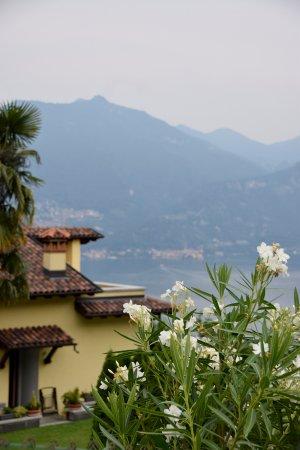 Balcone Fiorito Bed & Breakfast: El lago di Como desde nuestra terraza