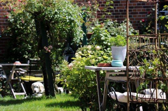 Fehmarn, Γερμανία: Cafe Garten im Sommer