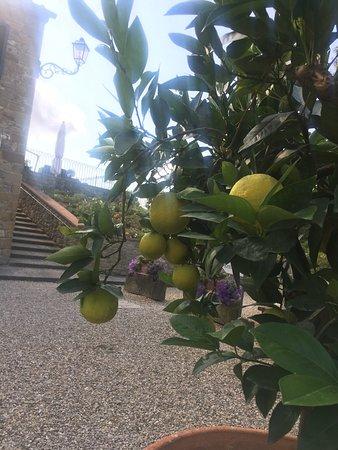 Borgo il Melone: photo1.jpg
