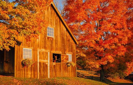 Manchester, VT: Bucolic Vermont Scene