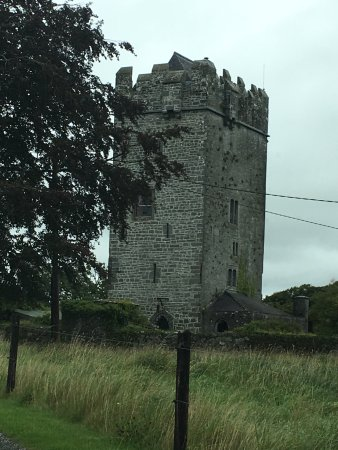 Ballyhannon Castle: photo3.jpg