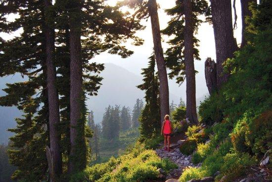 Bellingham, WA: Hiking Whatcom County