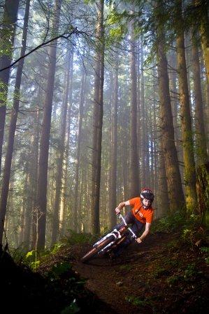 Bellingham, WA: Mountain Biking Galbraith Mountain