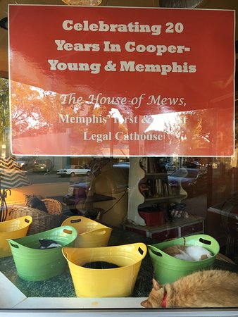 Cooper-Young Historic District: photo1.jpg