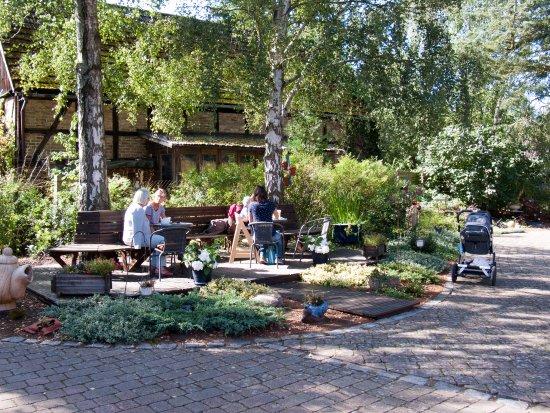 Ueckermünde, Duitsland: Garten