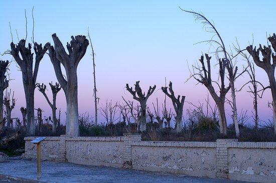 Lago Epecuen: La noche avanza en la villa deserta