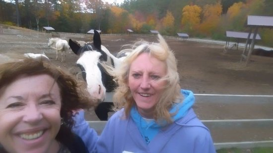Warrensburg, Estado de Nueva York: Photo bombed by a horse - hahahhaaaa