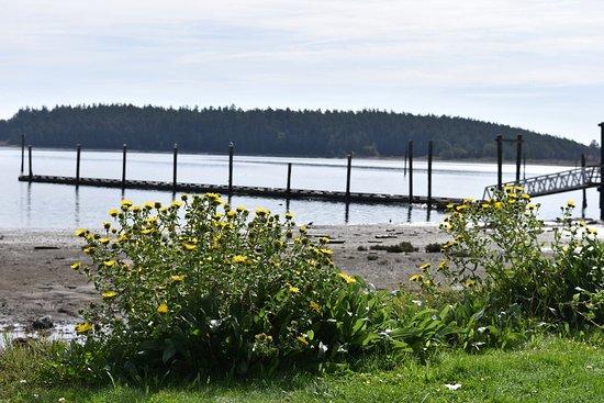 Oak Harbor Image