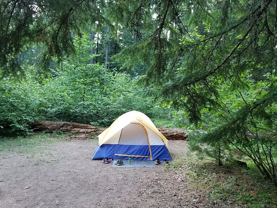 Prospect, OR: campsite