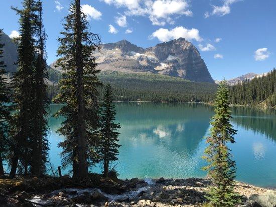 Zdjęcie Lake O'Hara Lodge