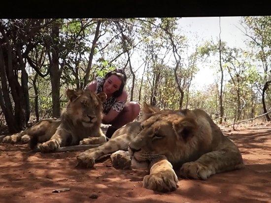 Mukuni Big 5 Safaris: photo3.jpg