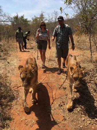 Mukuni Big 5 Safaris: photo5.jpg