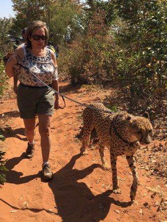 Mukuni Big 5 Safaris: photo6.jpg