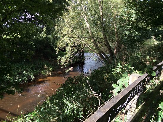 Danby, UK: the river around the woodland