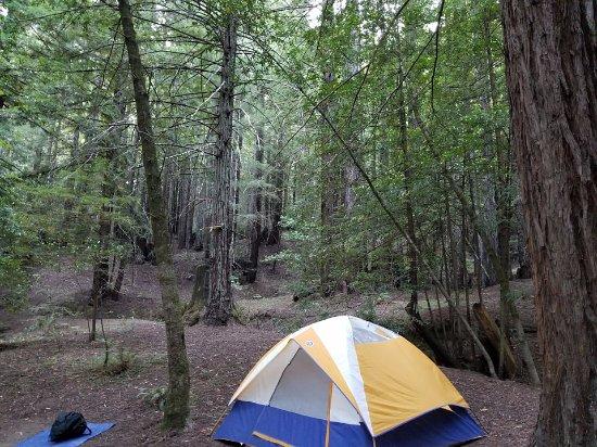 Weott, CA: camp site