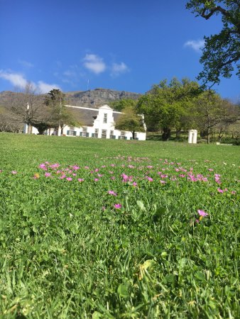 Constantia, Afrique du Sud : photo0.jpg