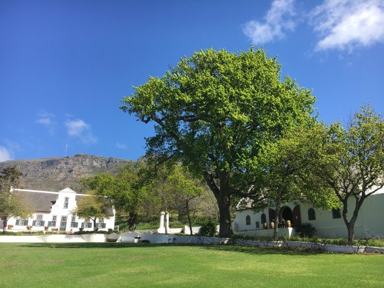 Constantia, Afrique du Sud : photo2.jpg