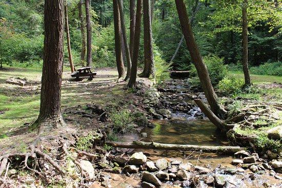 Mont Alto, PA: Picnic table at upper picnic area.