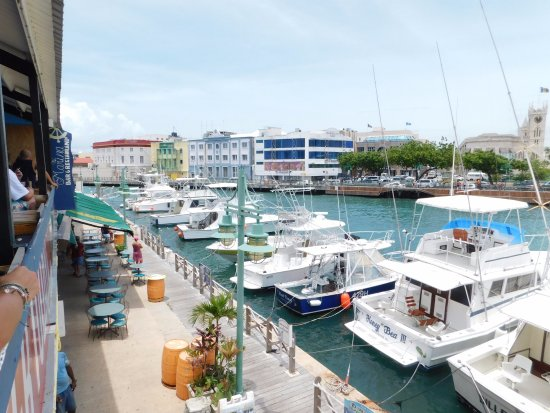 Marina Bar & Restaurant: View from our seats