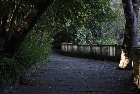 Piracicaba, SP: Corredores da trilha até a queda maior o Véu de Noiva.