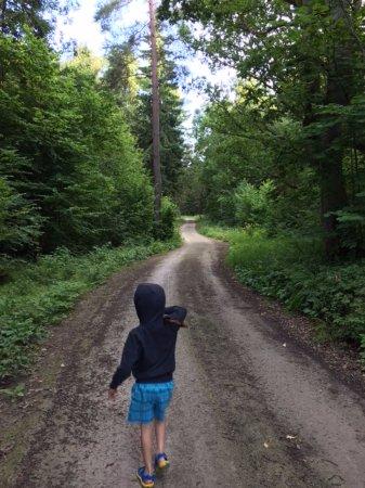 Viimsi, เอสโตเนีย: Road in Tädu