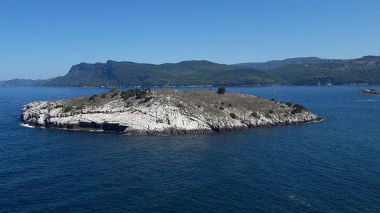 Photo0jpg Tavşan Adası Amasra Resmi Tripadvisor