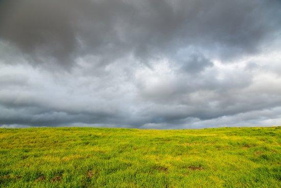 Menlo Park, CA: A Wintry Sky