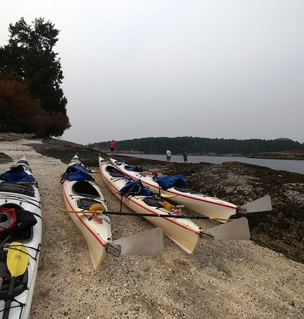 Friday Harbor, WA: On the 2nd day of our adventure, we had a short stop on Gossip Island.