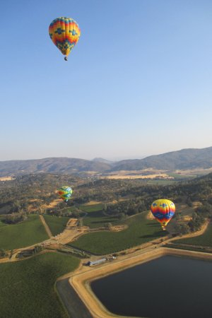 Napa Valley Aloft Balloon Rides: Three of the other 4 balloons above Pope Valley 9/9/17