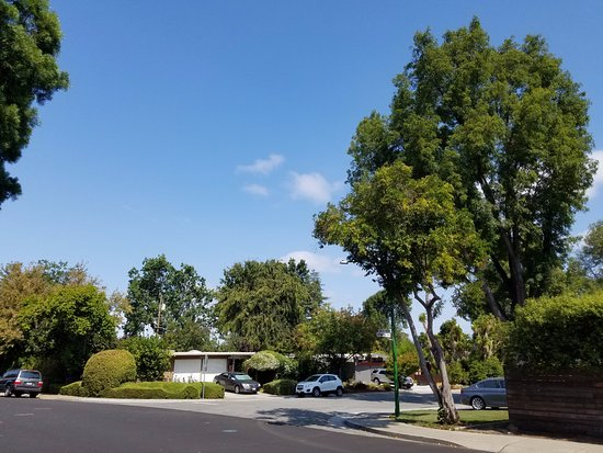 Palo Alto, CA: Lovely scenerio in Greer-Janice Way!