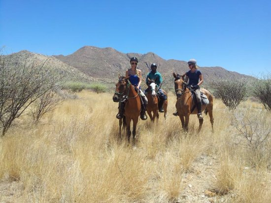 On horseback - the most natural way to experience our wildlife reserve