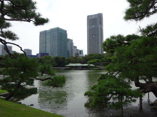photo1.jpg - Picture of Hama Rikyu Gardens, Chuo - TripAdvisor