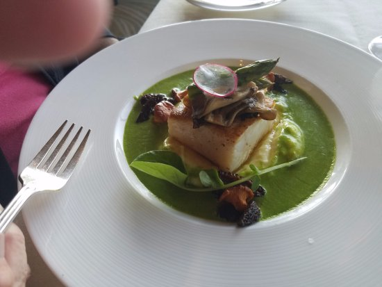 Five Sails Restaurant: Pan Seared Halibut
