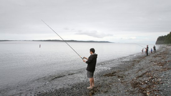 Port McNeill, Canadá: Fishing for salmons from the beach
