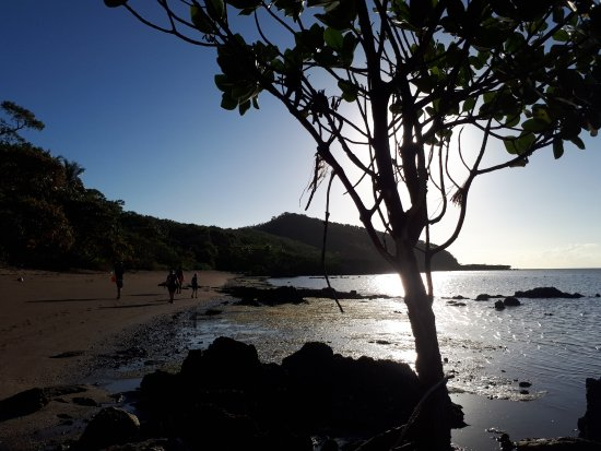 Palm Cove, Australie : Island beach