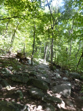 Front Royal, VA: Trail