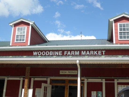 Woodbine Farm Market: Sign