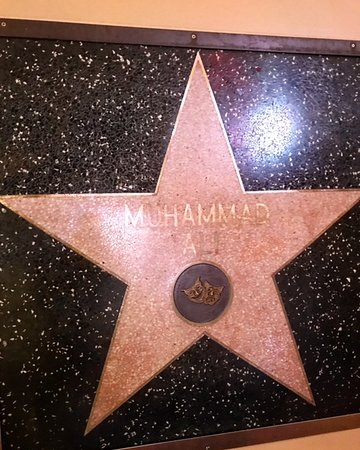 reputable site 8a23f 5295f Glitterati Tours  The walk of fame star of boxing legend Muhammad Ali is  actually on