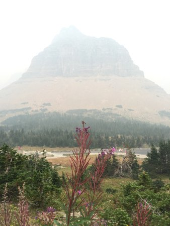 Glacier National Park Campgrounds: photo0.jpg