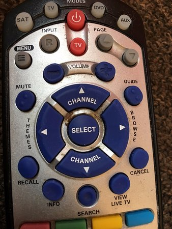 Europa Hotel: This is the remote control. I'd love to have a scientist do a swap of this thing and see...