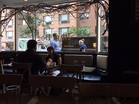 view onto the street picture of blue dog kitchen bar new york city tripadvisor - Blue Dog Kitchen Bar
