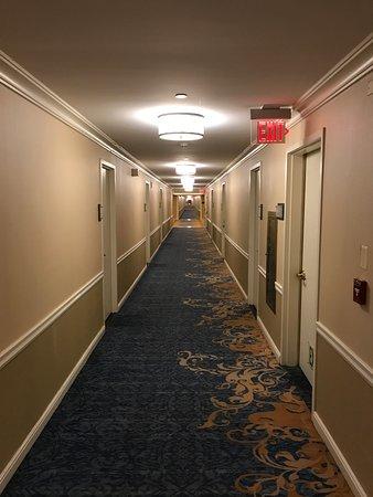 Capital Hilton: Long Hallways
