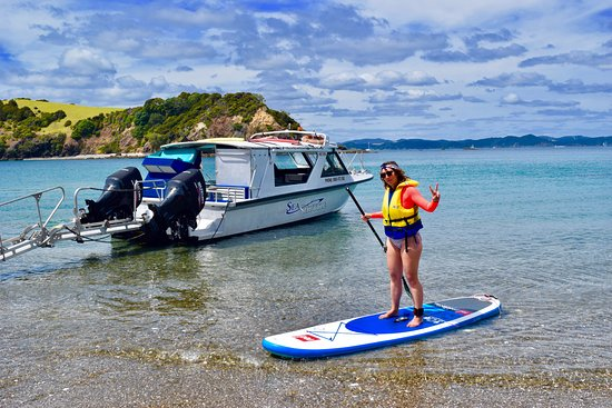 Paihia, New Zealand: Free paddle boarding!