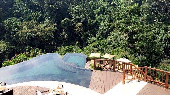 Hanging Gardens of Bali: photo5.jpg