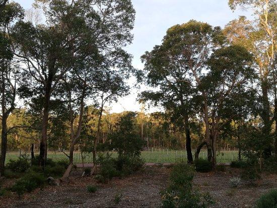 Eight Willows Retreat Resmi